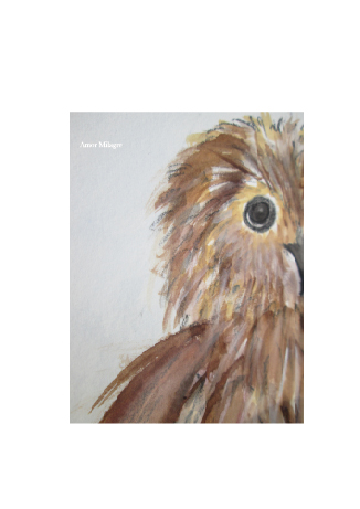 Amor Milagre Children's Book Animals Illustrations The Baby Owl 2 beautiful for all spaces and ages, especially in a nursery amormilagre.com