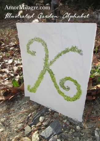 Amor Milagre Illustrated Garden Alphabet Letter K Green Leaf custom initials name word amormilagre.com