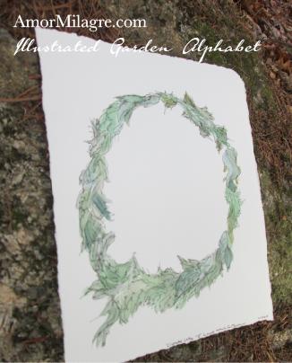 Amor Milagre Illustrated Garden Alphabet Letter O Green Leaf 1 custom initials name word amormilagre.com