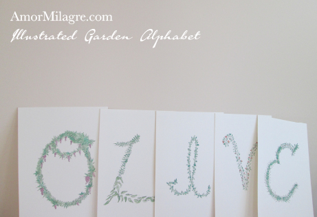 Amor Milagre Illustrated Garden Alphabet Letter OLIVE amormilagre.com