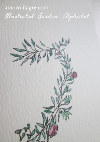 Amor Milagre Illustrated Garden Alphabet Letter G Pink Rose amormilagre.com