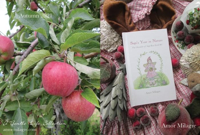 Amor Milagre Sage's Year in Nature Children's Book amormilagre.com